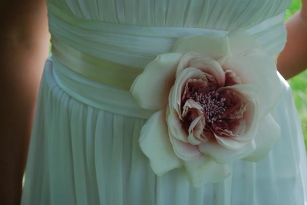 untamed petals 2